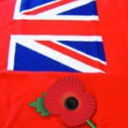 For Britain Will Honour Our Troops Every Day, Not Just Armistice Day