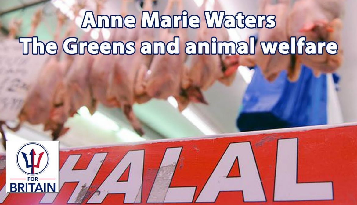 The Greens and animal welfare