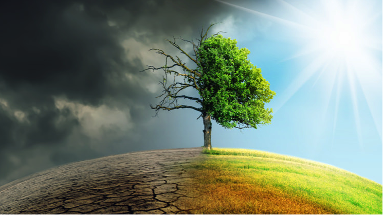SUNDAY COLUMN – What's behind the climate change movement?