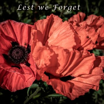 SUNDAY COLUMN: Lest We Forget